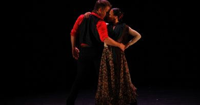 Festival flamenco majadahonda