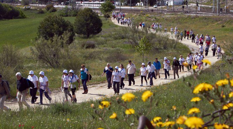 marcha popular mayores las rozas