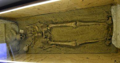 exposición restos arqueológicos boadilla del monte
