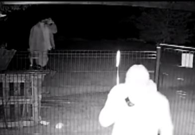 Detenida la célula de ladrones que actuaba en casas habitadas