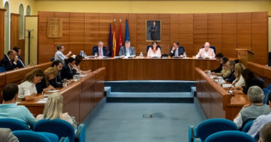 Pleno del Ayuntamiento.