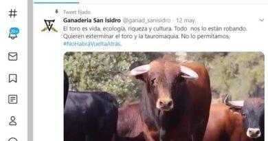 El vídeo del Toro bravo de la ganadería de San Isidro se hace viral