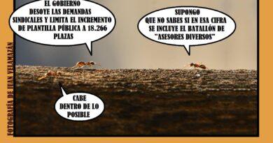 Hacen falta hormigas obreras