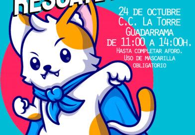 El Centro Cultural La Torre de Guadarrama acoge un taller de rescate animal el domingo 24 de octubre